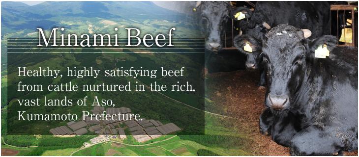 Minami Beef